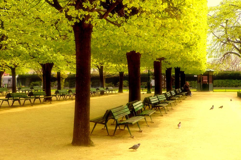 ParisPark_100_Dukoff