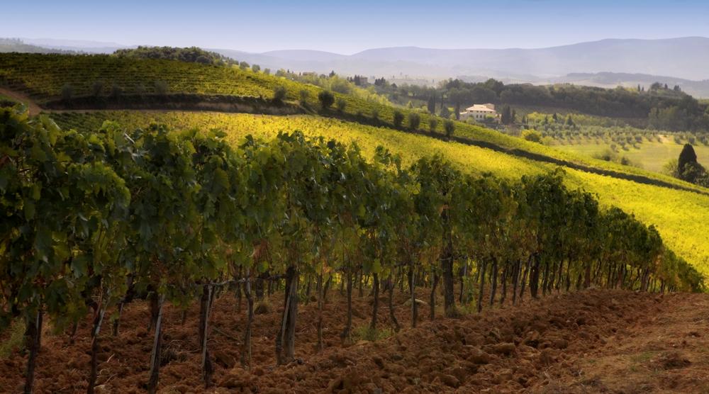 tuscany_100 Dukoff